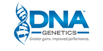 DNA Swine Genetics logo